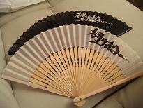 20090727-fan2.JPG
