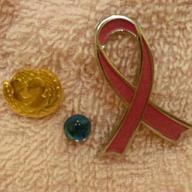 20090811-badges.JPG