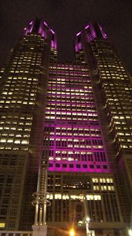 20091016-pink.JPG