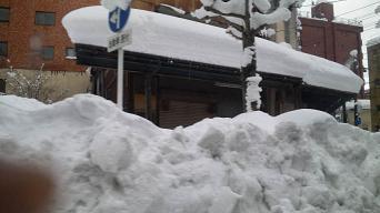 20100116-kariwayuki.JPG