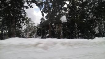 20100118-snow.JPG