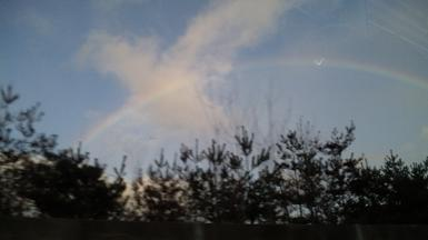 20100121-rainbow1.JPG