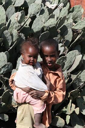 20100502-somaliaborthers1.JPG